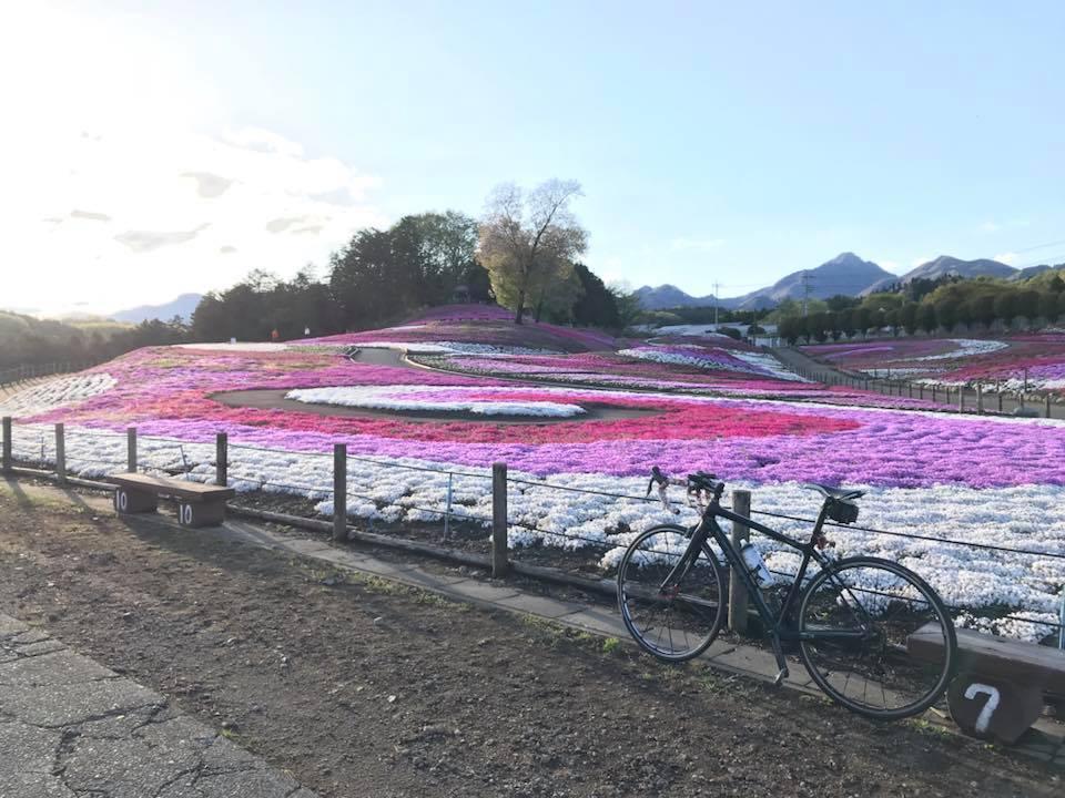 (ルート紹介)榛名の芝桜公園にサイクリング。