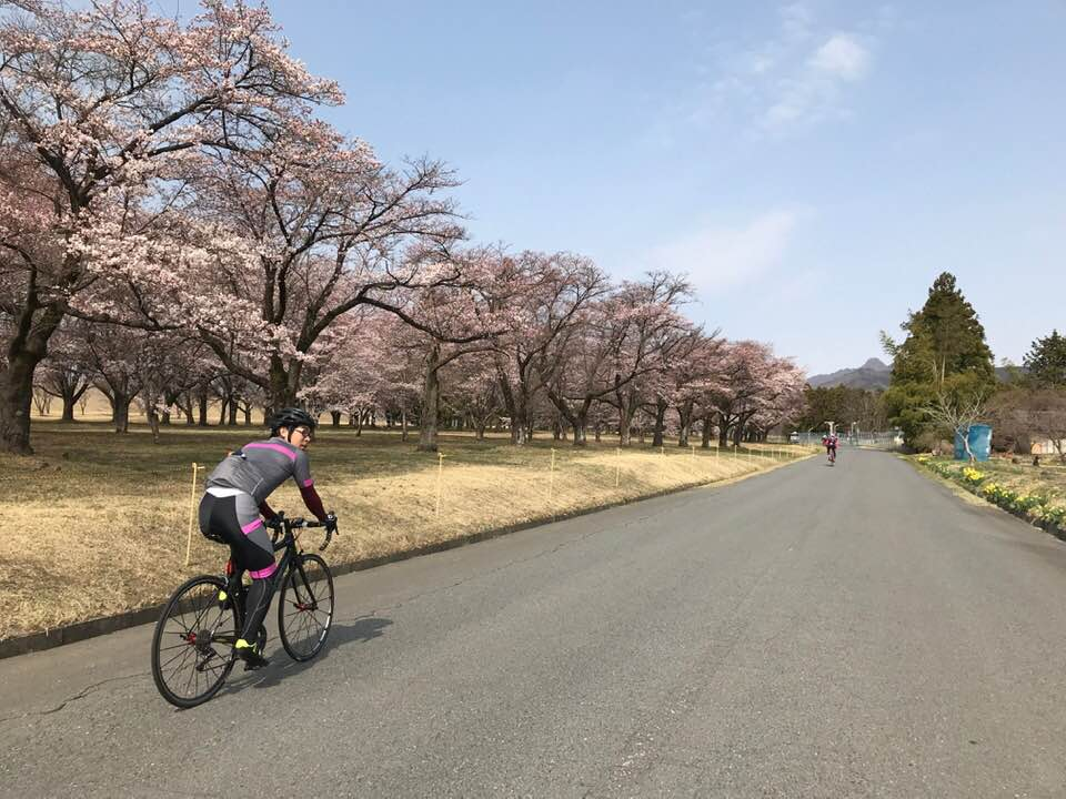桜がきれいな走行会でした。